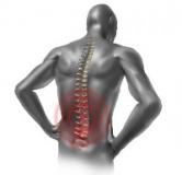 راهنمای کامل درمان کمر درد با داروهای گیاهی