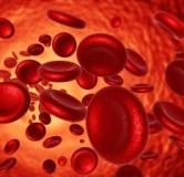 روشهای درمان کم خونی با طب مدرن، طب سنتی و طب اسلامی