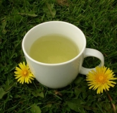 آیا مصرف چای قاصدک در دوران بارداری مفید است؟