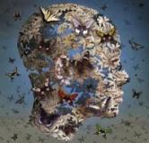 روشهای درمان روان پریشی یا سایکوز / بررسی علل و علایم