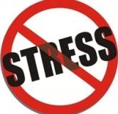 چگونه استرس خود را کاهش دهیم : کاهش استرس در کمتر از یک دقیقه
