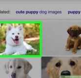 روش جستجوی عکس در گوگل با موبایل و کامپیوتر (آموزش تصویری)
