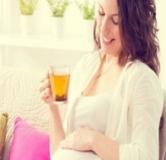 خوردن نعنا در طول بارداری