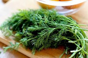 ۹ مورد از خواص درمانی سبزی شوید که در درمان این بیماریها شگفتانگیز است