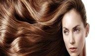 خواص روغن شاهدانه برای مو که نباید از آنها غافل شوید + دستورالعمل استفاده